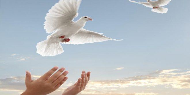 حدود آزادی در قرآن کریم کدام است؟